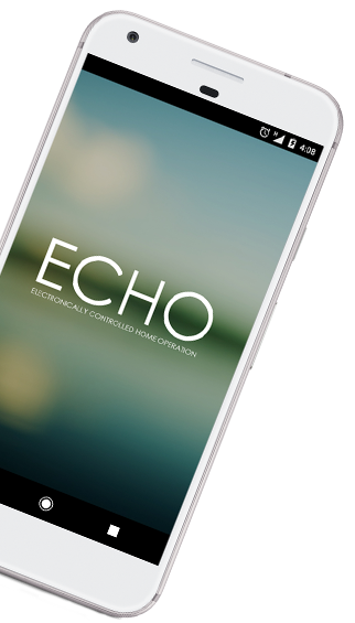 Pixel_echo_website_2